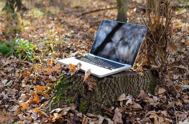 laptop, computer, pc
